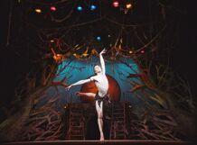Балет Маугли Театр классического балета п/р Н.Касаткиной и В.Василёва 2018-04-07T13:00 балет щелкунчик