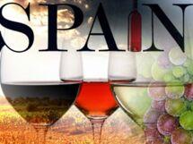 Вина Испании. Мастер-класс с дегустацией