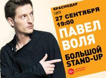 Концерт Павел Воля