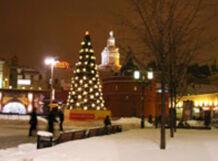 Автобусную экскурсию Мистическая Москва со Снегурочкой и Дедом Морозом