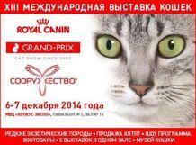 Гран-при ROYAL CANIN 2014 - XIII международная выставка кошек