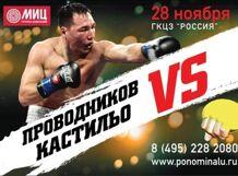 Бой Проводникова против Кастильо