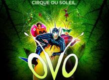 Cirque Du Soleil: OVO 2018-05-12T20:00 darren shan cirque du freak 12 sons of destiny book 12 in the saga of darren shan cirque du freak the saga of darren shan
