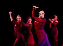 Театр танца фламенко Aire<br>