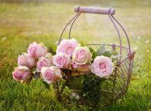 Подарю тебе розы и звезды