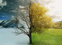Антонио Вивальди «Времена года» 2019-10-12T20:00 цена и фото