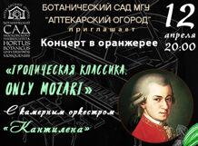 Концерт в оранжерее «Тропическая классика. Only Mozart» 2019-04-12T20:00 remey williams 2019 03 12t20 00