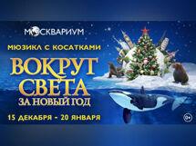 Вокруг света за новый год 2019-12-29T18:00 лодочник 2019 06 29t18 00
