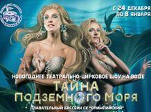 Новогоднее театрально-цирковое шоу на воде Тайна подземного моря<br>