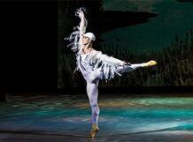 Звезды балета в гала-концерте и премьера к 50-летию театра от Ponominalu