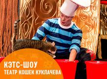 Cats-шоу<br>