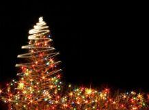Огни новогодней столицы<br>