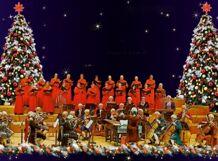 Рождество в Лондоне. Вивальди «Времена года». Лондонский Гендель Оркестр 2018-12-14T19:00 российский национальный оркестр 2018 12 04t19 00