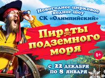 Цирковое водное шоу
