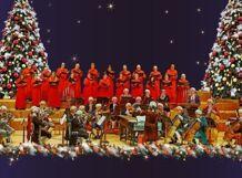 Лондонский Гендель-оркестр 2019-11-29T19:00 цена и фото