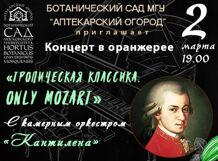 Концерт в оранжерее «Тропическая классика. Only Mozart» 2019-03-02T19:00 концерт артистов оркестра gran duo 2018 12 02t19 00