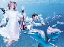 Музыка моря. Шоу китов и дельфинов в Ярославле<br>