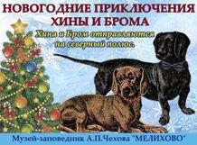 Новогодние приключения Хины и Брома. Хина и Бром отправляются на Северный полюс<br>