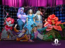 Цирковой мюзикл для всей семьи «АЛИСА» 2019-01-05T12:00 аксессуар henge docks mini displayport m to mini displayport f hda01mdp fdp