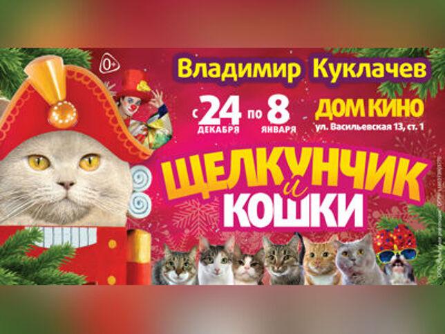 Щелкунчик и кошки в Екатеринбурге, 24 октября 2021 г., Дворец Молодежи