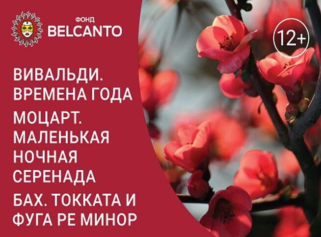 Концерт Вивальди. Времена года. Моцарт. Маленькая ночная серенада. Бах. Токката и фуга ре минор в Москве, 28 ноября 2020 г., Кафедральный Собор Святых Петра И Павла