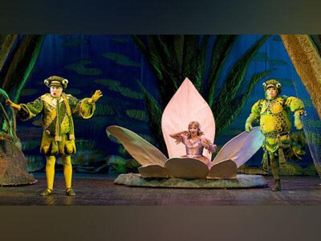 Дюймовочка в Москве, 11 октября 2020 г., Детский Музыкальный Театр Имени Натальи Сац